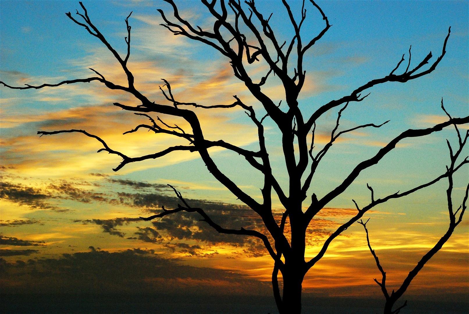Australia vacaciones trayectorio - Paisajes de australia ...