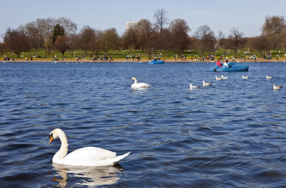 There are many Interesting Facts about London's Hyde Park