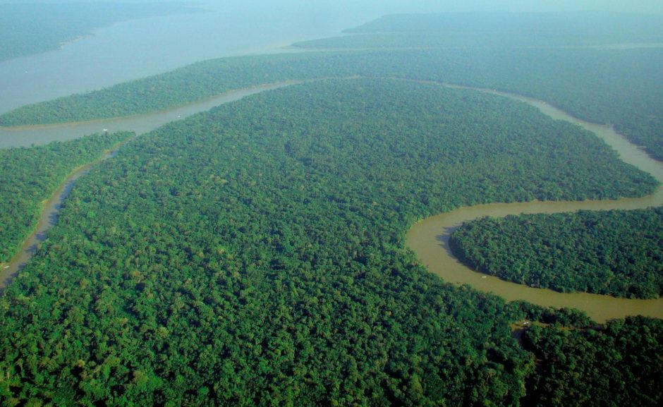 1280px-Aerial_view_of_the_Amazon_Rainforest